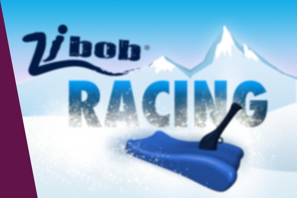 eLab Design Portfolio ZiBob Racing Mobile