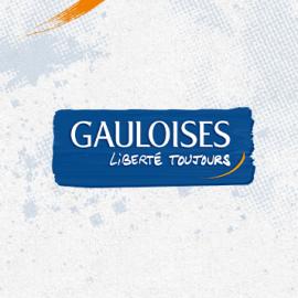 eLab Design Portfolio Gauloises Web icon